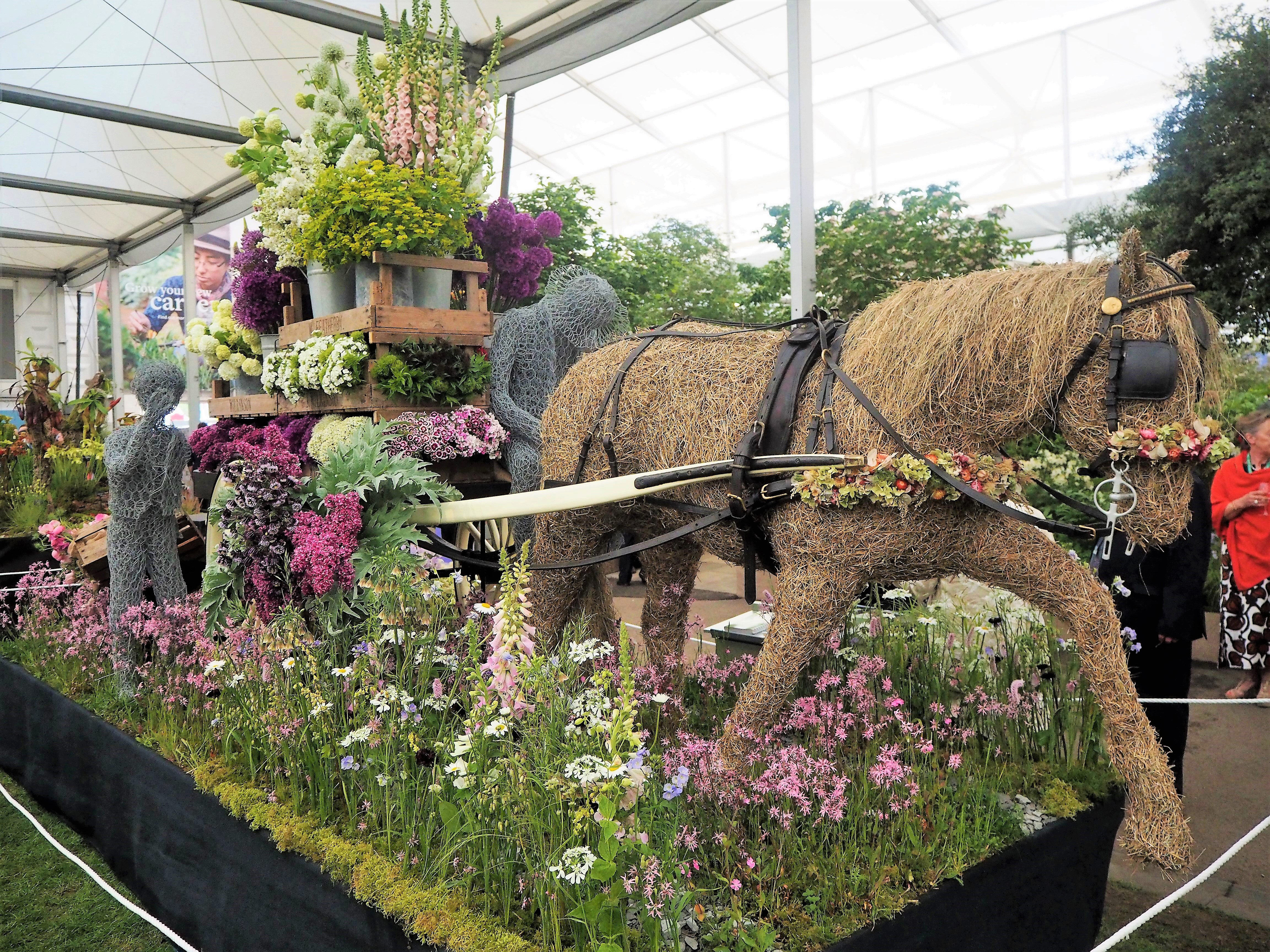 Flower display at Chelsea flower show 2018